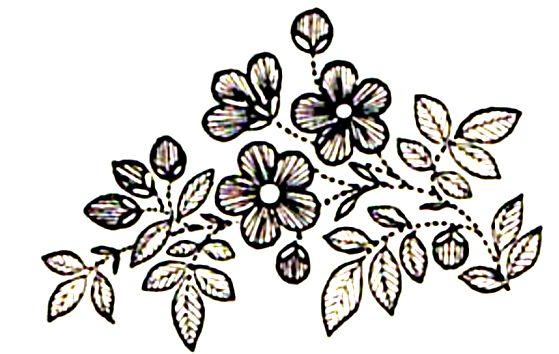 Вышивка тамбурным швом - Семиделухи