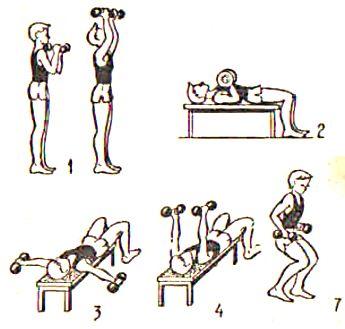 Упражнения с гантелями в домашних условиях для ребенка